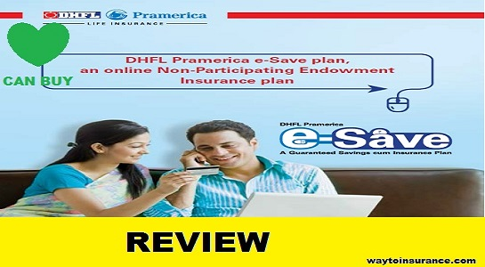 DHFL Pramerica E save plan