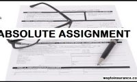 absolute-assignment