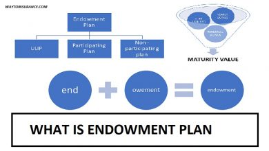 what is endowment plan